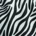 Zebra /w Dots Gabardine